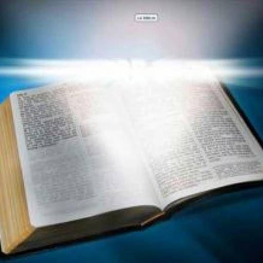 Recibe la palabra de Dios cada día en tu perfil #biblicos #cada #diarios #dios #palabra #perfil #recibe #versiculos #versiculos biblicos diarios