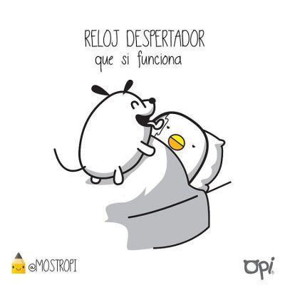 Incluso Los Domingos #kipi #pipo #cute #kawaii #mostropi #ilustración #domingo