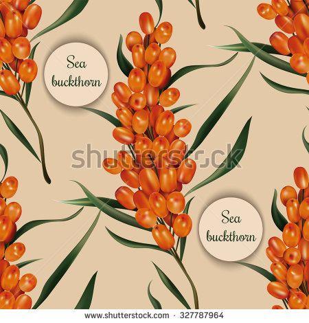 Photorealistic ripe  vector sea buckthorn seamless pattern - stock vector