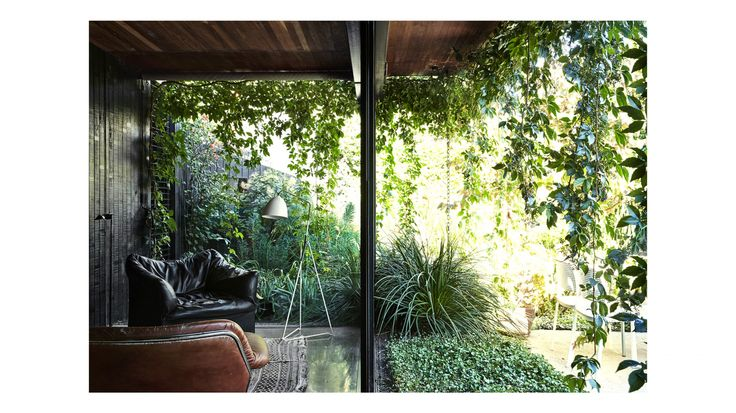 Our Favourite Gardens of 2018 | Melbourne garden, Backyard ...