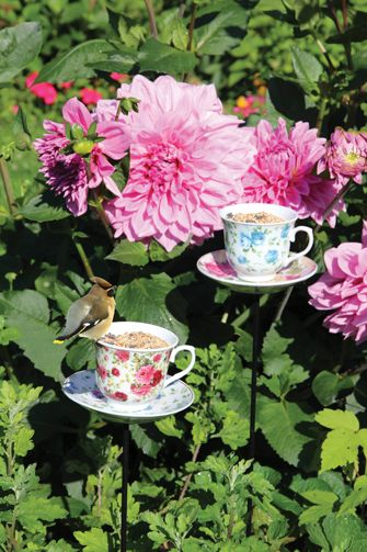 The perfect gift for the nature enthusiast! Product: 27-TEAPARTY