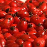 ROSEHIPS! this ingredient is HIGH in Vitamin C and is a main ingredient in our truth serum. It's known for brightening and boosting collagen. we.love.rosehips.