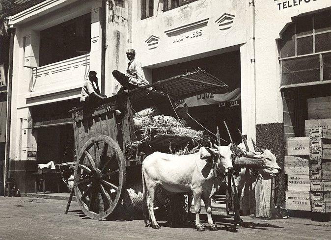 De Chineese wijk te Soerabaia 1938-1939.