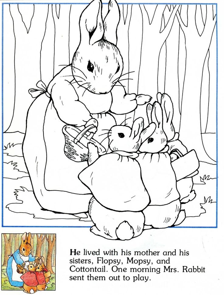 peter rabbit he lived with him mother and sisters flopsy mopsy and cottontail peter rabbitcoloring pagespeter