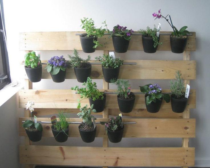 my daughter's indoor pallet garden for her loft apartment