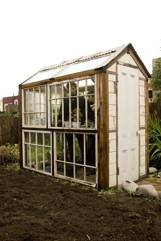 Greenhouse! Old windows! Have one and love it!! My husband built one for me several years ago.