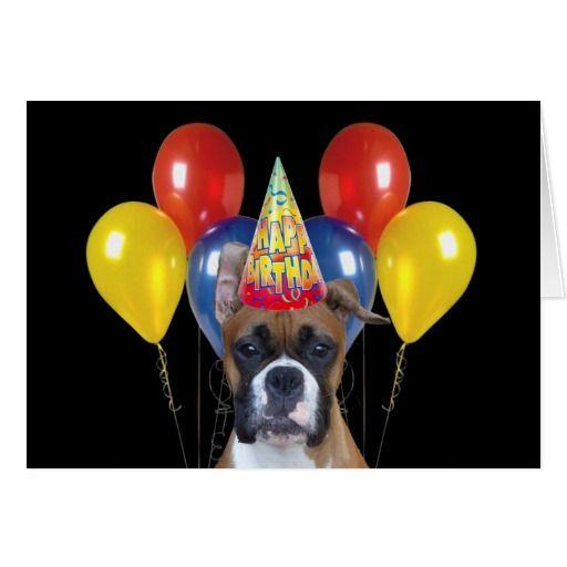 Dog Birthday Meme | happy birthday boxer dog MEMEs
