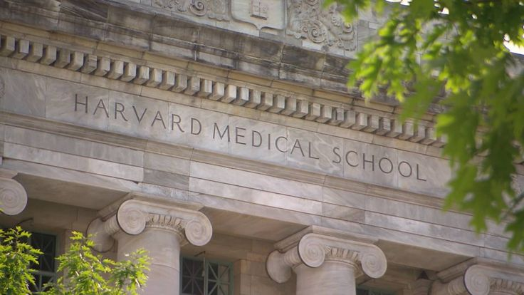 What Do I Need To Do To Get Into Harvard Medical School?