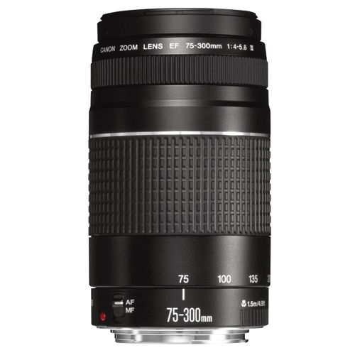 Объектив Canon EF 75-300mm f/4-5.6 III ―  Fotofishka.ru - интернет магазин фототехники