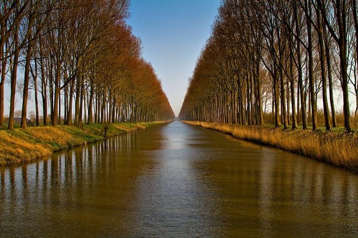 ~ Canal Damme ~ © Roland Botterman
