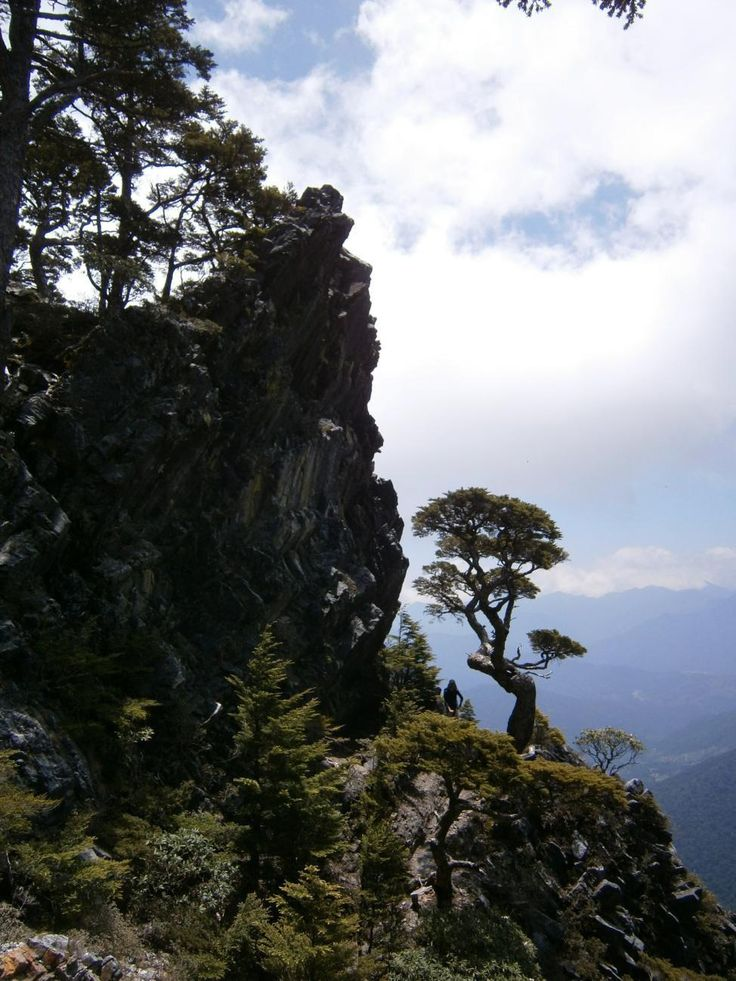Wuling Sixiu is one of Taiwan's great high mountain hikes that summits four 3000 meter peaks in 3 days.