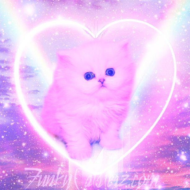 Sparkle Sugar Kawaii Wallpaper Cute Doodles Kitten Wallpaper