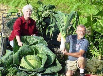 (+1) тема - Огородные секреты - как вырастить корнеплоды-великаны | 6 соток