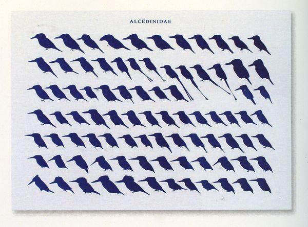 Hans Waanders - Kingfishers