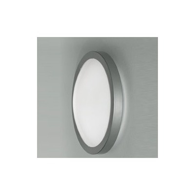 Zaneen Lighting Mini Ai-Pi 1 Light Wall Sconce/Flush Mount