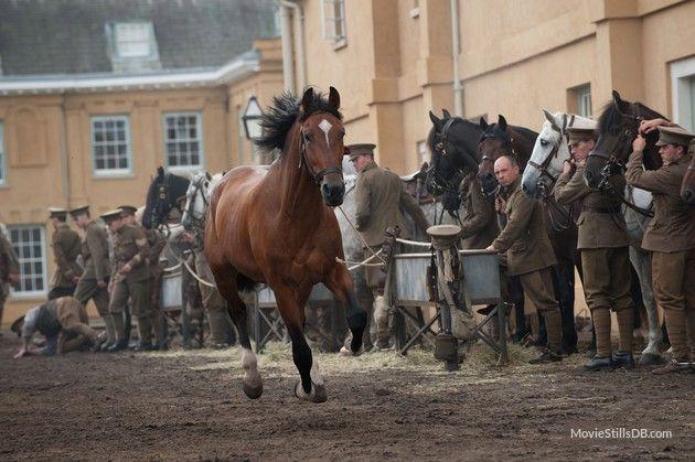 War Horse - Publicity still