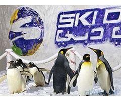 Ski Dubai Tickets for Sale in Dubai