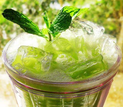 gurkensaft-grüne-minze-chotda-500x436