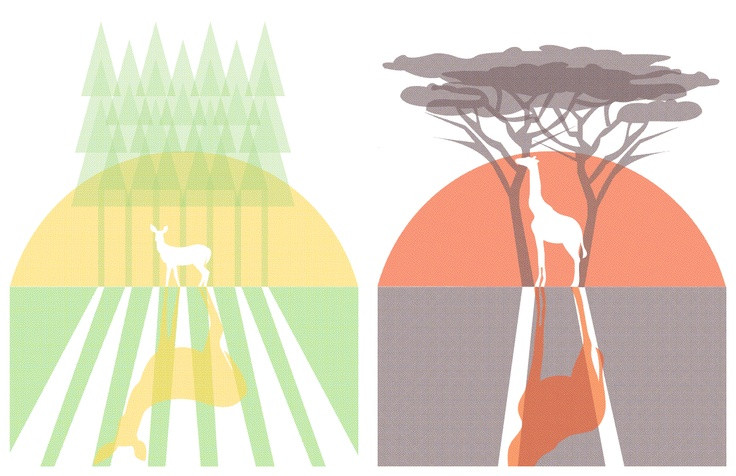 Illustration of a wildlife scene in Canada and South Africa