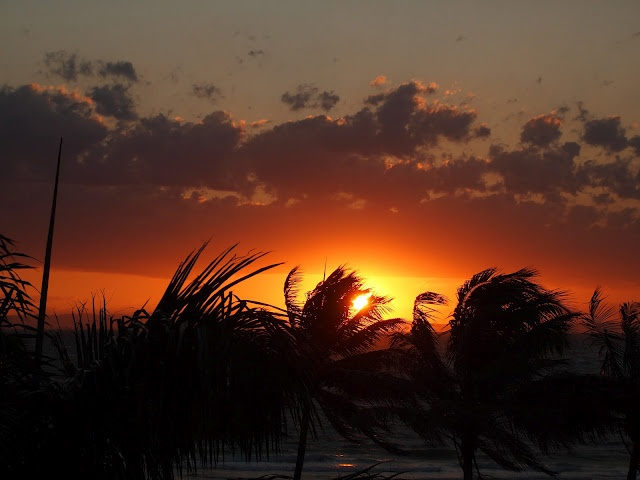 October 2011: Moreton Island, Australia