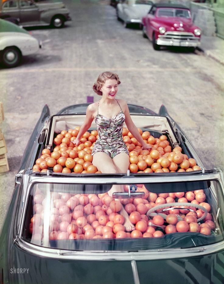 bathing suit and citrus circa 1951