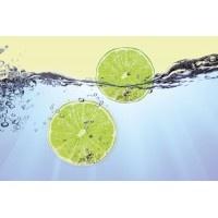 109VE XXXL - Icke-Vävd / Non-Woven Fototapet Lemon Slices