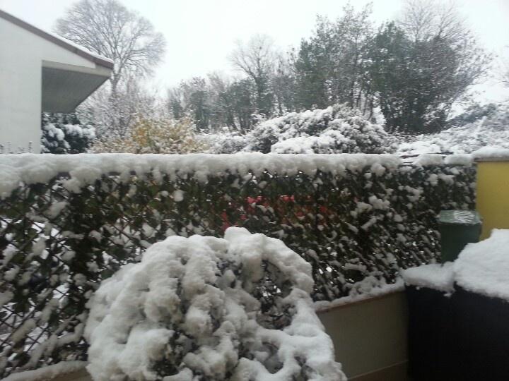 La neve al mattino è un come un buon caffè