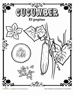 Fruits and Vegetables in Spanish Coloring Pages in 2020