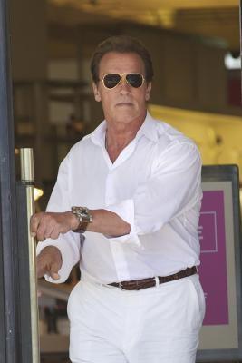 Arnold Schwarzenegger: Back on the Prowl, Nearing Divorce