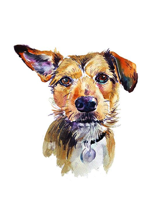 Hey, I found this really awesome Etsy listing at https://www.etsy.com/listing/216681667/custom-pet-portrait-custom-portraits