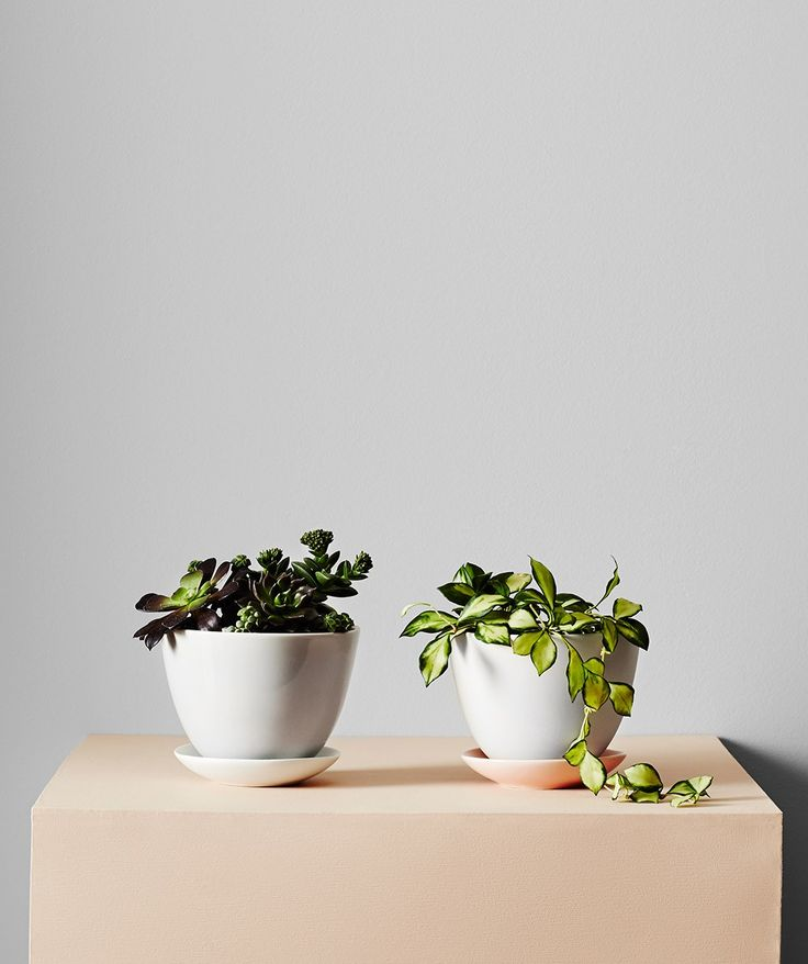We love this petite ceramic handmade pot and drip tray set. Perfect for small plants and succulents. | huntingforgeorge.com