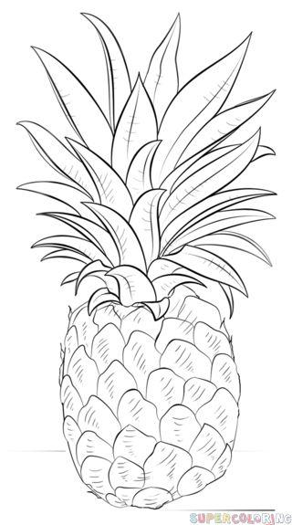 Comment dessiner un ananas   étape par étape tutoriels de dessin
