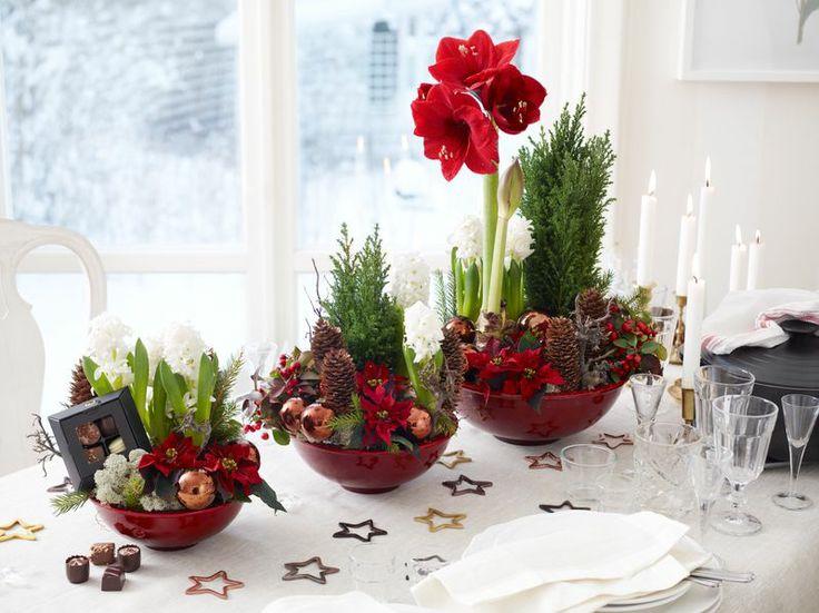 Traditionella julgrupper är fortfarande väldigt populära gåvor till jul.   Amaryllis, hyacinter, julstjärna, blommor