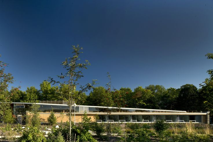First Peoples House, Victoria, BC Landscape Formline Architecture, Photo: Nic Lehoux