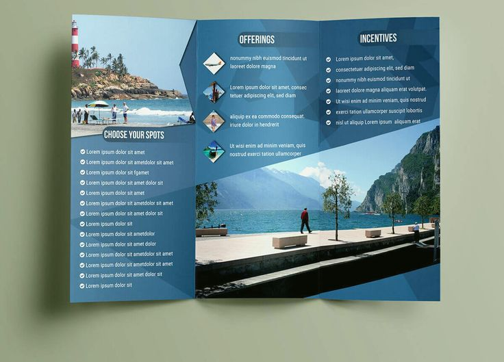 Best Brochure Design Template Images On   Brochure