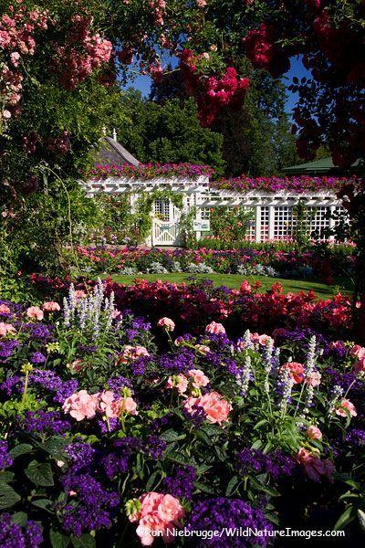 1000 Images About Beautiful Butchart Garden On Pinterest Victoria British British Columbia