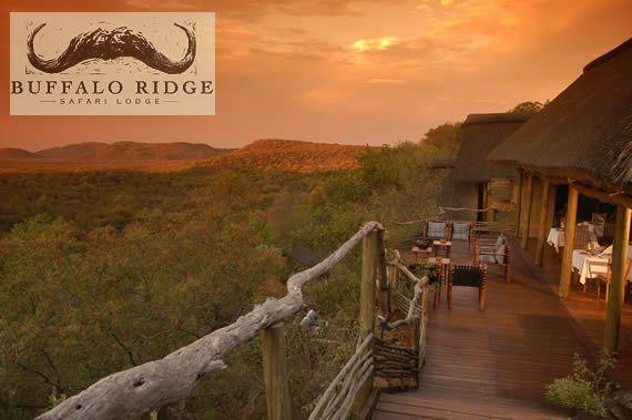 Buffalo Ridge Safari Lodge -  Madikwe Game Reserve