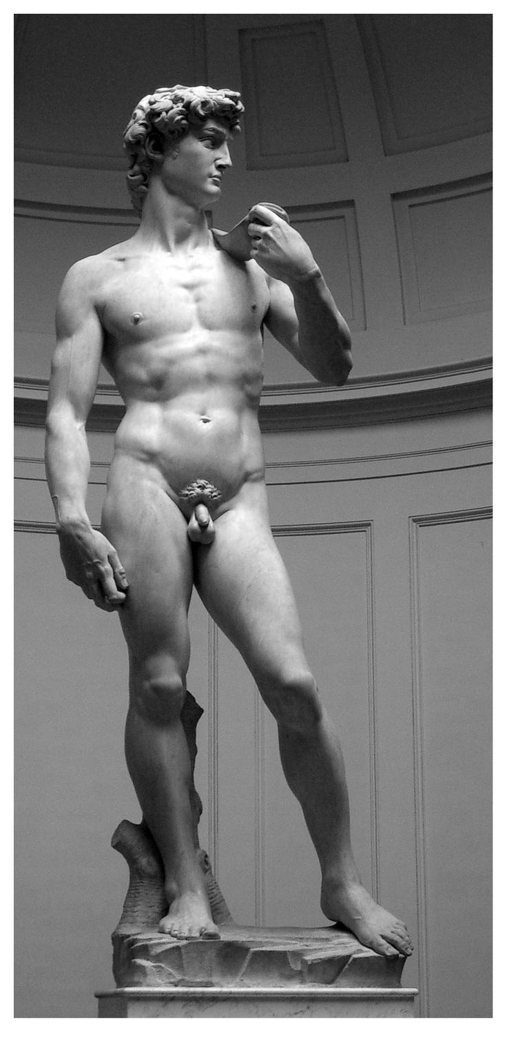David, Michelangelo Buonarroti, 1501-1504. Etude de l'oeuvre disponible au CDI: http://0590068d.esidoc.fr/id_MF_MF11040812561573_2011.html
