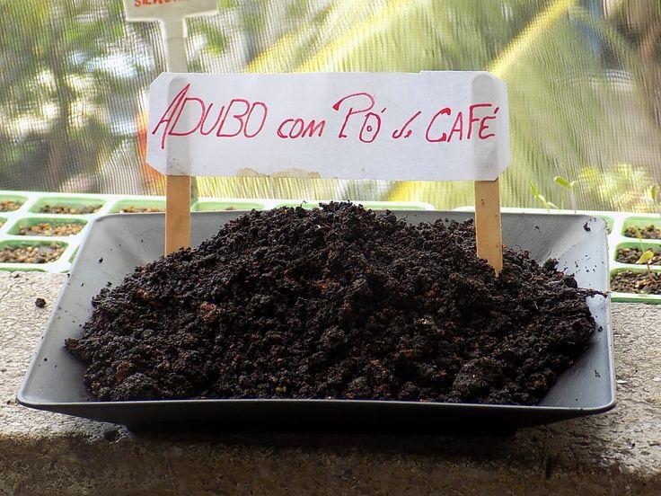 Nesse vídeo ensino fazer um Adubo incrível usando borra de Café , esse adubo contém os principais nutrientes que sua planta precisa , NITROGÊNIO, CARBONO . e...
