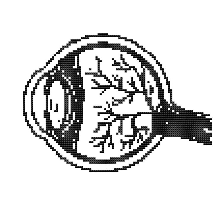 Gezählt Cross Stitch Kit Auge-Anatomie