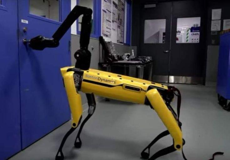 Human Tests SpotMini's Robustness!  http://techmash.co.uk/2018/02/22/boston-dynamics-spotmini/  #BostonDynamics #SpotMini #Robot #Software #Robotics #Design #Walking #OpenDoors #Autonomous #Command #Navigate #Computer