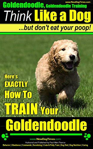 Goldendoodle, Goldendoodle Training | Think Like a Dog ~ ... https://www.amazon.com/dp/B00I43NGO2/ref=cm_sw_r_pi_dp_mNcIxb3WT10DQ