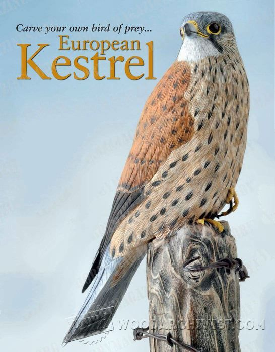 Bird carving european kestrel wood patterns and