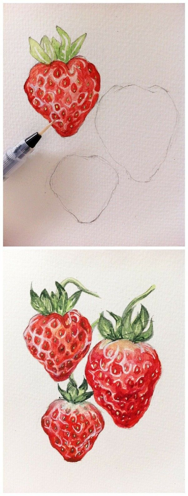 Colour pencil drawing tutorial #Fruit illustrations# strawberry (fruit water color)