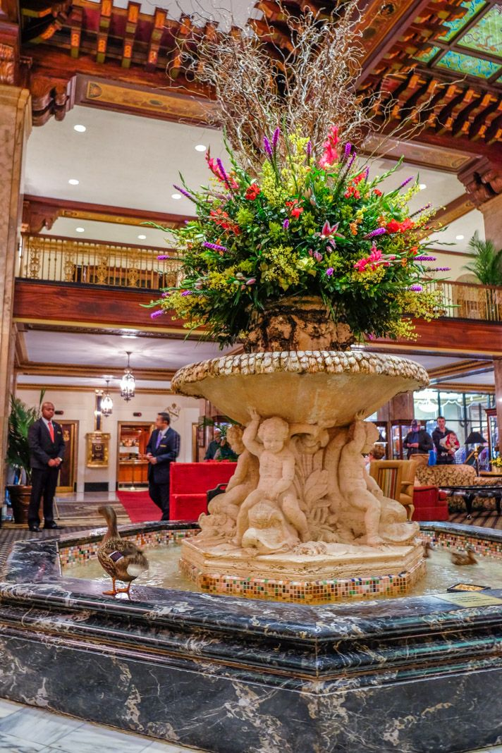 The Ducks at The Peabody Hotel