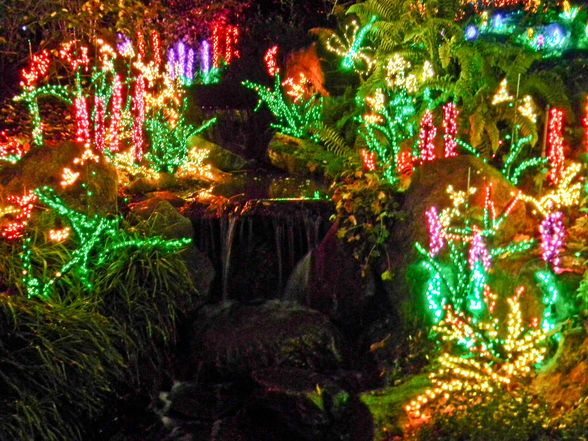 17 best images about winter holidays in bellevue on pinterest seasons snowflakes and holiday for Bellevue botanical garden lights