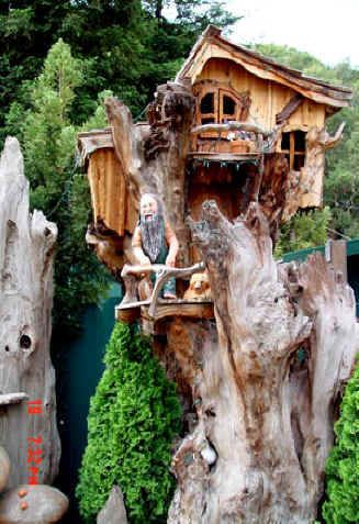 Redwood tree houses. Live in a funky home mounted within a great Redwood and get a wonderful view of the forest.