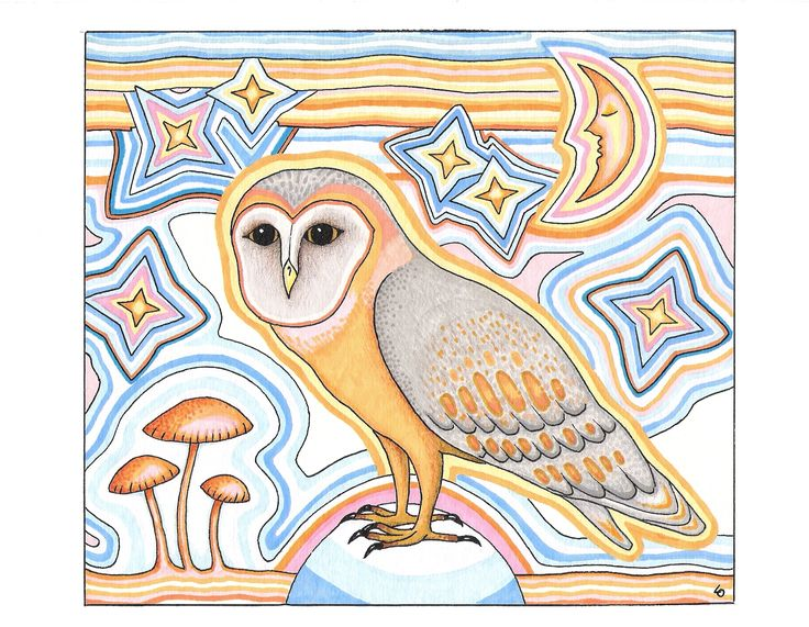 Owl, Lars Overballe, 2016