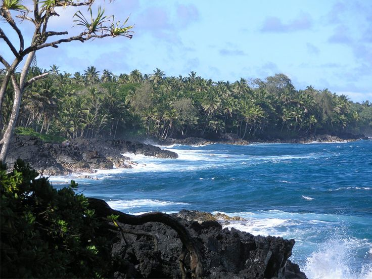 The-Hawaii-Belt