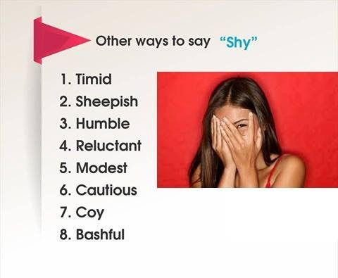 Other ways to say Shy